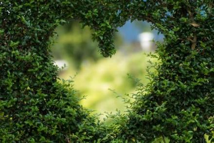 Gode råd til bæredygtig levevis